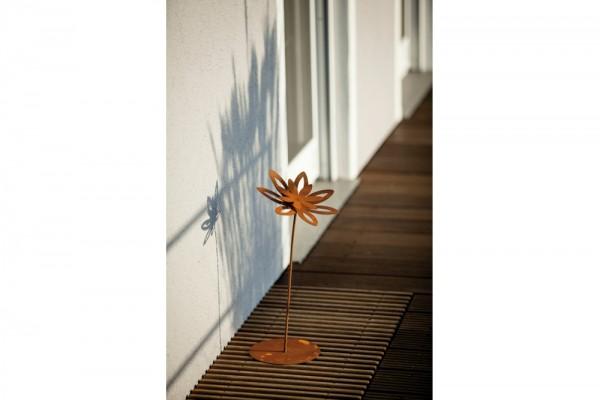 Blume Margerite auf Platte #307